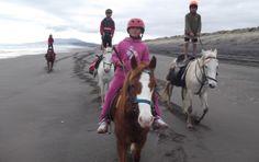 Horse treks, Kawhia...NZ