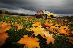 Autumn! Dolnośląski Rally - Tomasz Kuchar