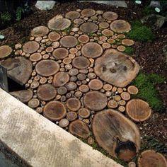 Tree Trunk Patio