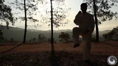 Chen Bing and Bosco Baek Tai chi footage Los Angeles #chentaichi #cbtausa #taijiquan #chenjiagou #chenvillage #boscobaek #chenbing #chenbingtaijiacademyusa #losangelestaichi #太极拳 #陈氏太极 #陈家沟 #美国陈炳太极院 #陈炳 #白承哲