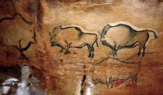 Bison in the prehistoric La Covaciella cave, Spain.  Photo courtesy & taken by José Manuel Benito