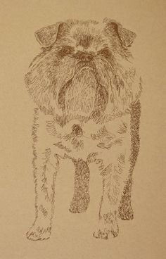 Brussels Griffon: Dog Art Portrait by Stephen Kline - art drawn entirely from the words Brussels Griffon. drawdogs.com http://drawdogs.com/product/dog-art/brussels-griffon-dog-portrait-by-stephen-kline/ His collectors number in the thousands from over 20 countries and every state in the US. Kline's dog art has generated tens of thousands of dollars for dog rescues worldwide.