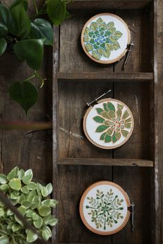 ~Sweet Little Succulent Embroideries~ Fair Trade + Handmade in India ~ Ethical Home Decor