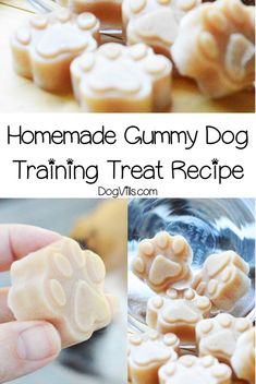 If you're looking for a unique reward to use in training sessions you'll love our homemade gummy dog training treat recipe! Check it out! Diy Dog Treats, Homemade Dog Treats, Dog Treat Recipes, Healthy Dog Treats, Dog Food Recipes, Beef Gelatin, Dog Training Treats, Dog Nutrition, Dog Cookies