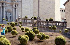 Girona, temps de flors / Girona