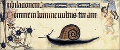 S for Snail: Medieval snails...
