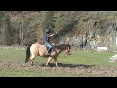 Step by step how to train a horse for horse back archery - YouTube