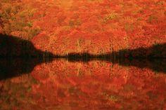 """美しさにため息がもれる!一度は見るべき日本全国の""""鏡張りの絶景""""8選2016"""