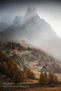 From grey to colors by XavierJamonet. Please Like http://fb.me/go4photos and Follow @go4fotos Thank You. :-)