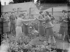 West Indian women serving in Britain: Garden party of West Indian ATS: Women working in one of Britain's ordnance depots attend a party given in their honour by members of the WVS and the British Legion Women's Section at Bicester. Private Jackman, from Barbados, receiving a rose from her hostess, Mrs Coker.