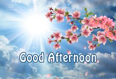 Good Afternoon Messages For Friends Cute Morning Quotes, Good Afternoon Quotes, Good Morning Good Night, Night Wishes, Day Wishes, Gud Afternoon, Afternoon Messages, Messages For Him, Nice Messages For Friends