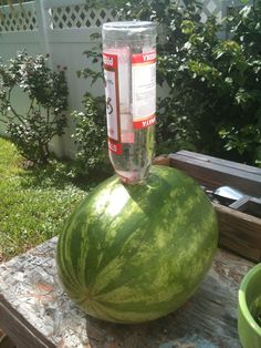 "vodka-soaked watermelon aka ""Drunken Watermelon""! Ingredients: 1 bottle of Vodka (One 1.14 litre bottle) {really an alcohol} 1 Watermelon (Large) Instructions: Cut a hole into the top of the watermelon. Put the vodka into the hole and let it soak in the watermelon overnight. Cut the top off the watermelon and get ready to be hammered. I'm doing this for 4th of July - festive!!"