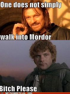 One does not simply walk into Mordor...Bitch please! Go, Sam! #autism #aspergers #LOTR