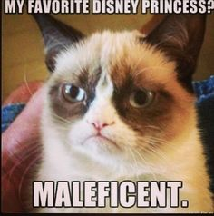 I LOVE THIS! I have nothing against the disney princesses, I love them too but Maleficent is mine and Brinkly's all time favorite villain!!!!!!!