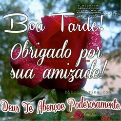Portuguese Quotes, Shopping Websites, Shop Signs, Girls Shopping, Free Printables, Preschool, Facebook, Msgm, Humor