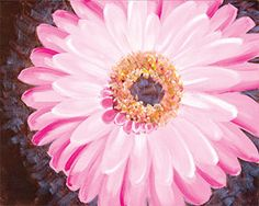 """Social Artworking Canvas Painting Design - Pink Gerbera Daisy  CANVAS SIZE:  16"""" x 20""""  TIME TO PAINT:  approximately 1 hour 30 minutes"""