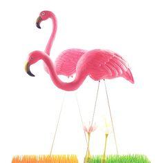 Set of 2 - Pink Flamingos - Garden Ornaments Lawn Ornaments, Garden Ornaments, Flamingo Garden Ornament, Garden Statues, Pink Flamingos, Beautiful, Fox, Decor, Trends