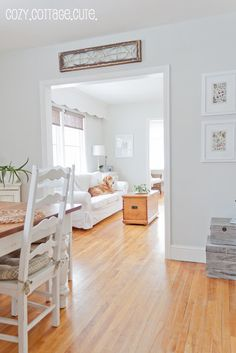 "benjamin moore ""grey owl"" at half tint/half strength @ Cozy.: New Living Room / Dining Room Paint Colour Powers Blackwell Calming Paint Colors, Dining Room Paint Colors, Grey Paint Colors, Paint Colors For Home, Living Room Colors, Gray Paint, Colour Gray, Wall Colors, Living Room Wood Floor"