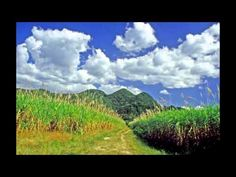 Beautiful Jamaica Landscape - hotels accommodation yacht charter guide All Beautiful Jamaica and Travel Vids @hotels-aroundtheglobe.info or http://www.hotels-aroundtheglobe.info or Wallpapers http://www.wallpapers2000.com