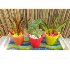 10 Mini Cactus Souvenir En Vitrofusion $ 150.0 - KET souvenirs en vitrofusion
