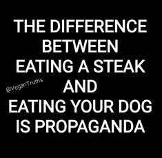 Defend Animals · PETA-Approved Vegan T-Shirts & Cruelty-Free Clothing for anima. - Defend Animals · PETA-Approved Vegan T-Shirts & Cruelty-Free Clothing for animal rights activists - Vegan Facts, Vegan Memes, Funny Vegan Quotes, Peta, Steaks, Vegetarian Quotes, Cake Vegan, Why Vegan, Visual Statements