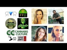 Expert Joints LIVE! - Tales From The Triangle