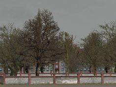#Laubbäume - #blattlos. Ab #EEP8