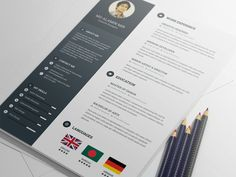 Premium Resume Template Free Psd  Cv  Book    Resume