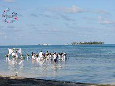 4 Beach, Water, Outdoor, Islands, Flowers, Gripe Water, Outdoors, The Beach, Beaches