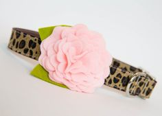 Dog Collar with Flower  Pink Leopard by pecanpiepuppies on Etsy, $42.00