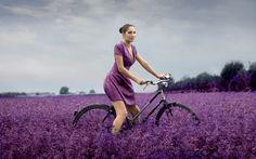 Girl Bike Field Flowers Purple HD Wallpaper | FreeHDWall.Com | Free HD Wallpapers for your Desktop