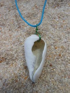 mystery island seashell NECKLACE- white cone shell necklace -turquoise shell necklace- beach jewelry- island jewelry on Etsy, $17.00