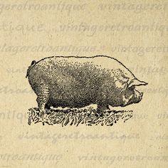 Antique Pig Digital Graphic Image Illustration Download Printable Vintage Clip Art for Transfers Printing etc HQ 300dpi No.3255