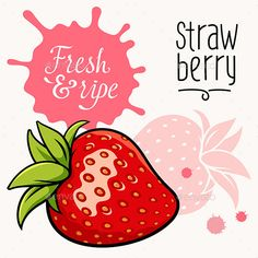 Strawberry Concept