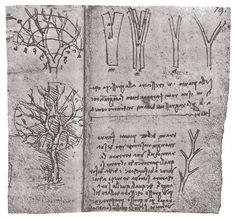 The Book of Trees: 800 Years of Visualizing Science, Religion, and Knowledge in Symbolic Diagrams | Brain Pickings