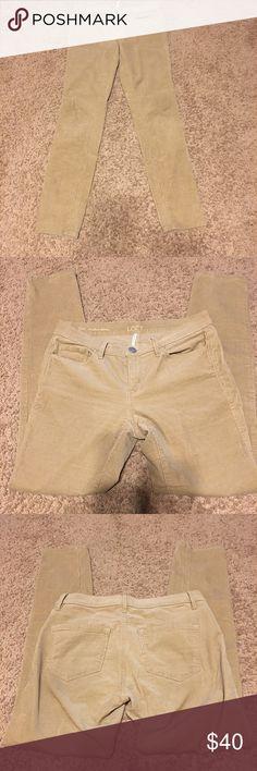 Corduroy skinny pants LOFT modern skinny corduroy pants LOFT Pants Skinny