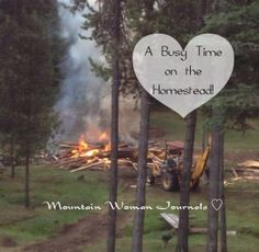 mountain woman journals a busy time on the homestead http://radio.thesurvivalmom.com/mountain-woman-journals-busy-time-homestead/