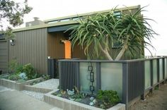 mid-century landscaping with fence.