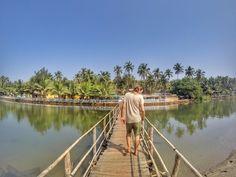Mandrem Beach - Guide to North Goa Beaches