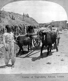 Vender of vegetables, Athens, Greece. Man with ox-drawn cart. Keystone View Co. Library of Congress Prints and Photographs Division Washington, D. Rare Photos, Old Photos, Athens Greece, Library Of Congress, Washington Dc, Moose Art, History, Prints, Pictures