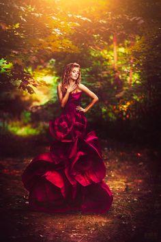 Svetlana Belyaeva - Fashion Photographer - Valentine - Love - Red Rose Concept