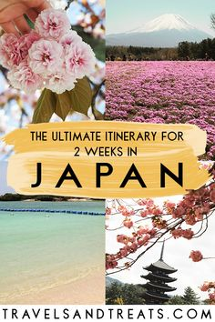 The ultimate itinerary for 2 weeks in Japan. See the best places to visit in Japan. #Japan #Tokyo #Kyoto #Osaka #Okinawa #Nara