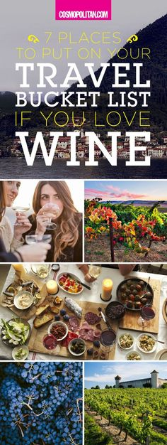 TRAVEL BUCKET LIST FOR WINE LOVERS: Satisfy your wanderlust and channel your inner wine lover with these fun and beautiful travel destinations for wine lovers. Click through to see the complete list of destinations in the United States, France, Italy, Mex Wine Bucket, 7 Places, In Vino Veritas, Travel List, Fun Travel, Travel Stuff, Travel Goals, Travel Plan, Foodie Travel