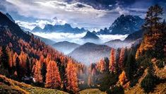 Dolomites during Fall, Italy. One adventure I look most forward to this year is my upcoming Dolomites adventure and helicopter Tour. Check out the link in my bio for more info! Italy Vacation, Vacation Trips, Vacation Travel, Vacations, Camping Photography, Nature Photography, Fall Wallpaper, Beautiful Landscapes, Travel Photos