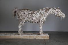 Nicola Hicks - close up of plaster to be cast in bronze Chelsea School Of Art, Art School, Plastic Art, Royal College Of Art, Zoology, Farm Animals, Pet Birds, Lion Sculpture, Bronze