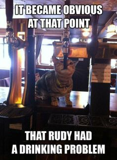 Became Obvious - funny pictures #funnypictures
