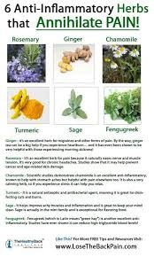 Image result for rosemary anti inflammatory
