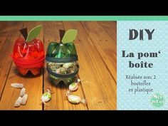 DIY - La Pom'boîte - Astuce avec Bouteilles en Plastique - YouTube