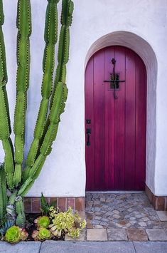 Door Photograph - Magenta Door and giant cactus