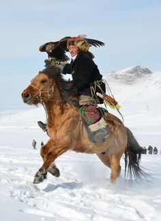 "avisenmanu: "" A 72 year old mongolian hunter with his golden eagle…on horseback. If you don't understand how badass this is, you're not alive """